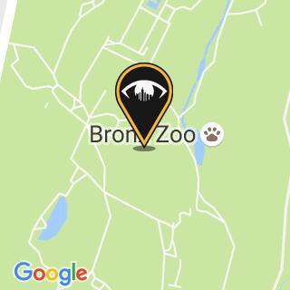 Bronx zoo 2x