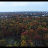 Fall Foliage on Staten Island