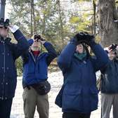 An Afternoon With the Birders of Central Park