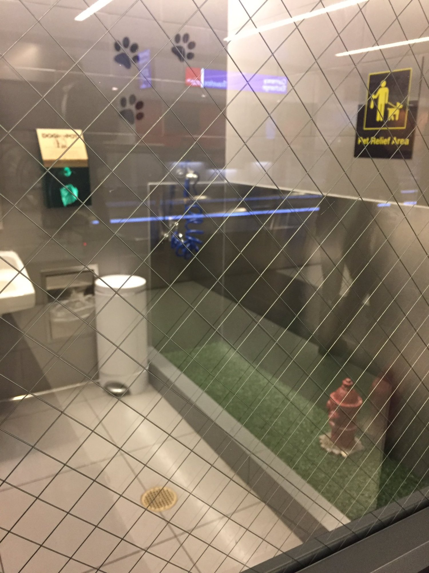 The dog bathroom at JFK is one of the cutest things ever. https://t.co/BciZEOHlmx