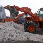 DSNY SnowFighters