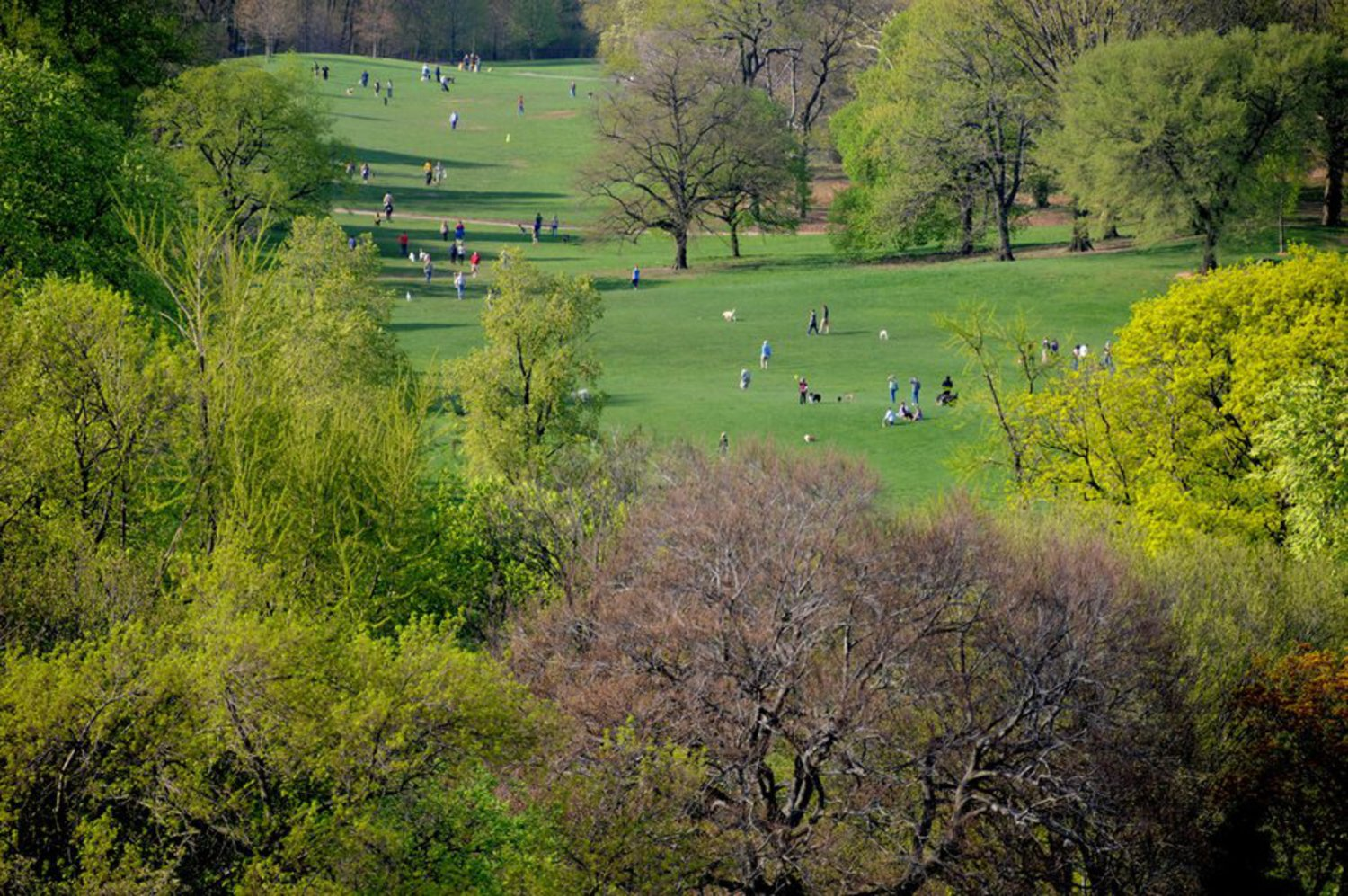Prospect Park, Brooklyn, New York