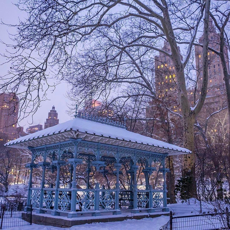Photo via @dario.nyc  Central Park  #viewingnyc