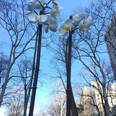 Two Orchids - Isa Genzken