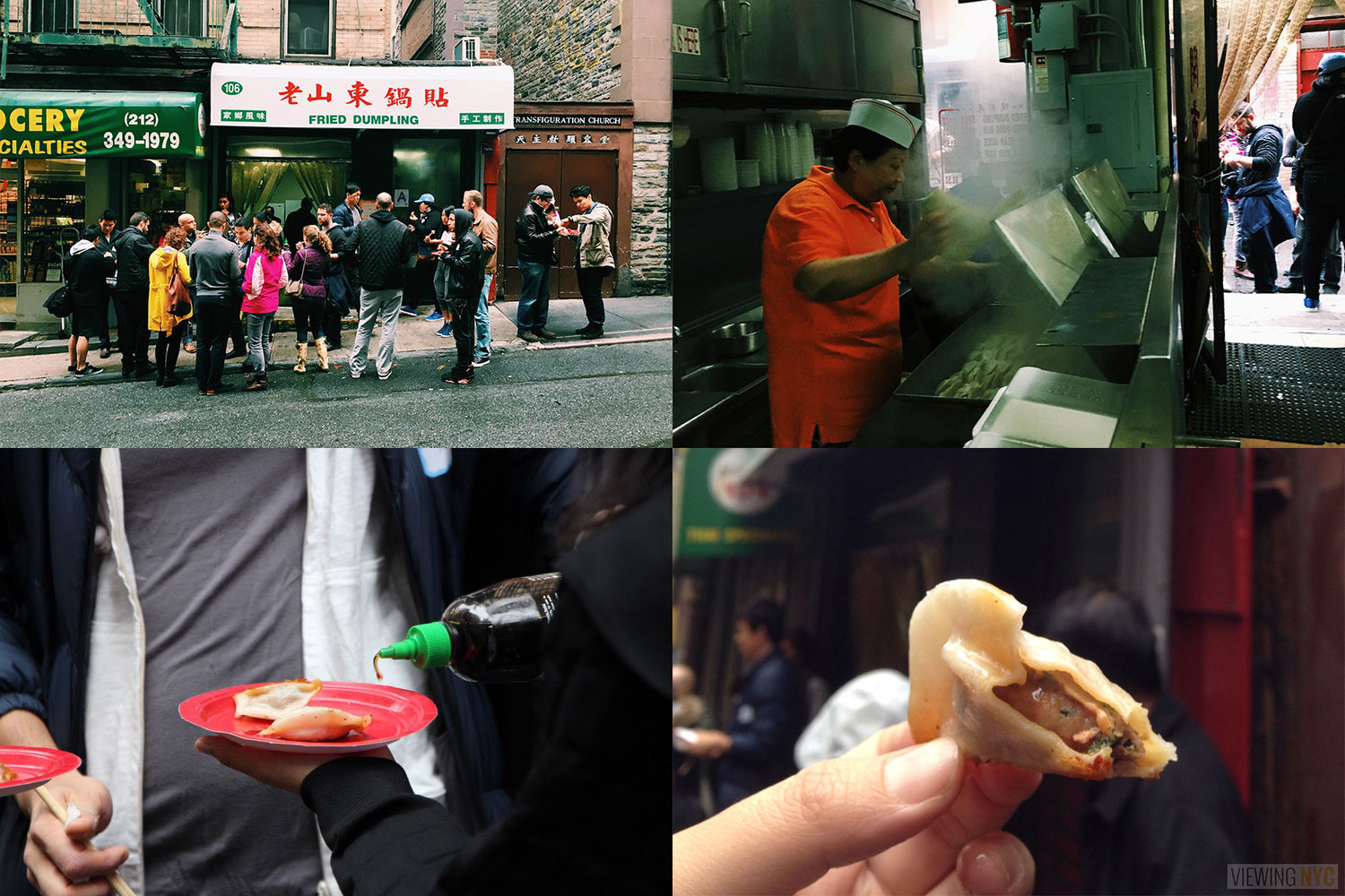 """Fried Dumpling 