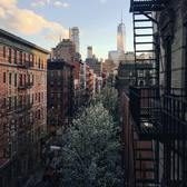 One of my favorite views of NYC, taken earlier this spring right from my own fire escape. My friends at @caldreaco are giving away a day of exquisite experiences to those with superior architectural taste. Go to @caldreaco to test yours. #experiencecaldrea #sp