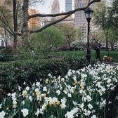Madison Square Park, Manhattan. Photo via @melliekr #viewingnyc #nyc #newyork #newyorkcity