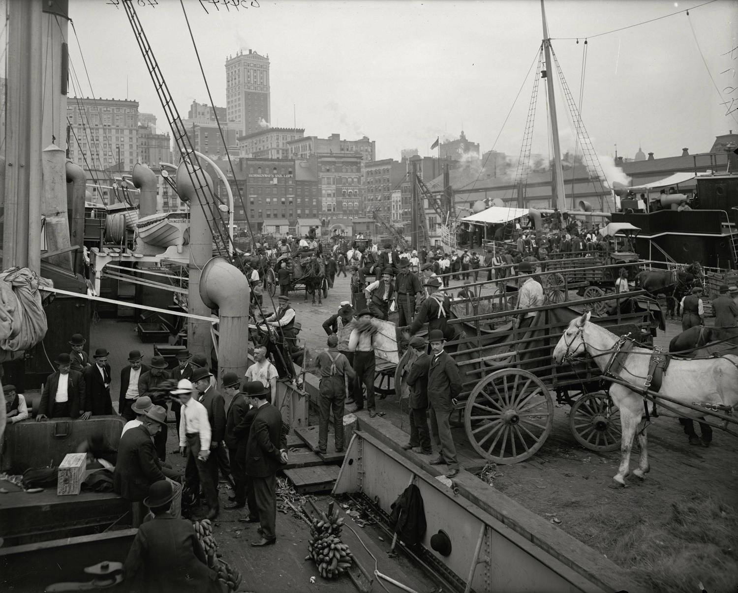 Banana docks, New York, ca.1890-1910