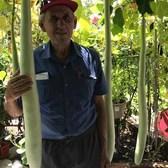 Sam Ianotta is 'The Garden Father' of Staten Island
