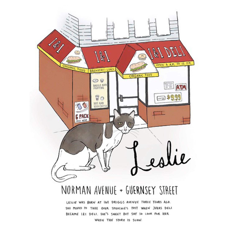 Leslie // Greenpoint  #brooklynbodegacats #bodegacats #bodegacatsofinstagram #brooklyn #greenpoint #illustration #catsofinstagram