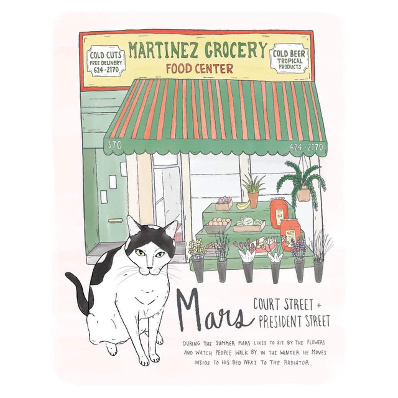 Mars // Carroll Gardens #brooklyn #brooklynbodegacats #bodegacatsofinstagram #bodegacats #carrollgardens