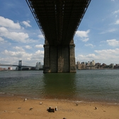 Under Brooklyn Bridge