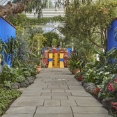 The NYBG's Frida Kahlo exhibit pays homage to the signature blue walls of the Casa Azul, leading visitors through a landscape of Mexican plants.
