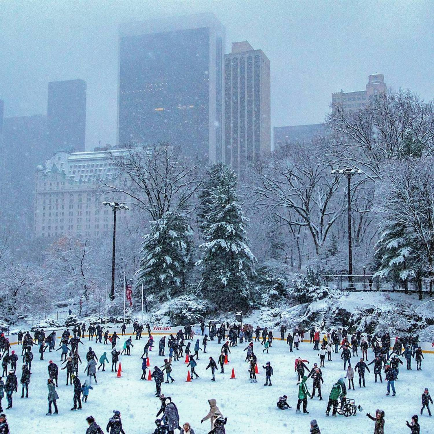 Wollman Rink, Central Park, New York, New York