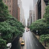 42nd Street from Tudor City Bridge, New York, New York