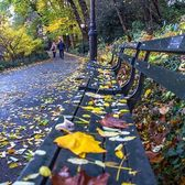 Central Park, New York. Photo via @newyorkcitykopp #viewingnyc #newyorkcity #newyork #nyc
