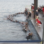 NYC Triathlon