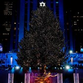 240 Miles and 50,000 Lights: The Rockefeller Center Tree