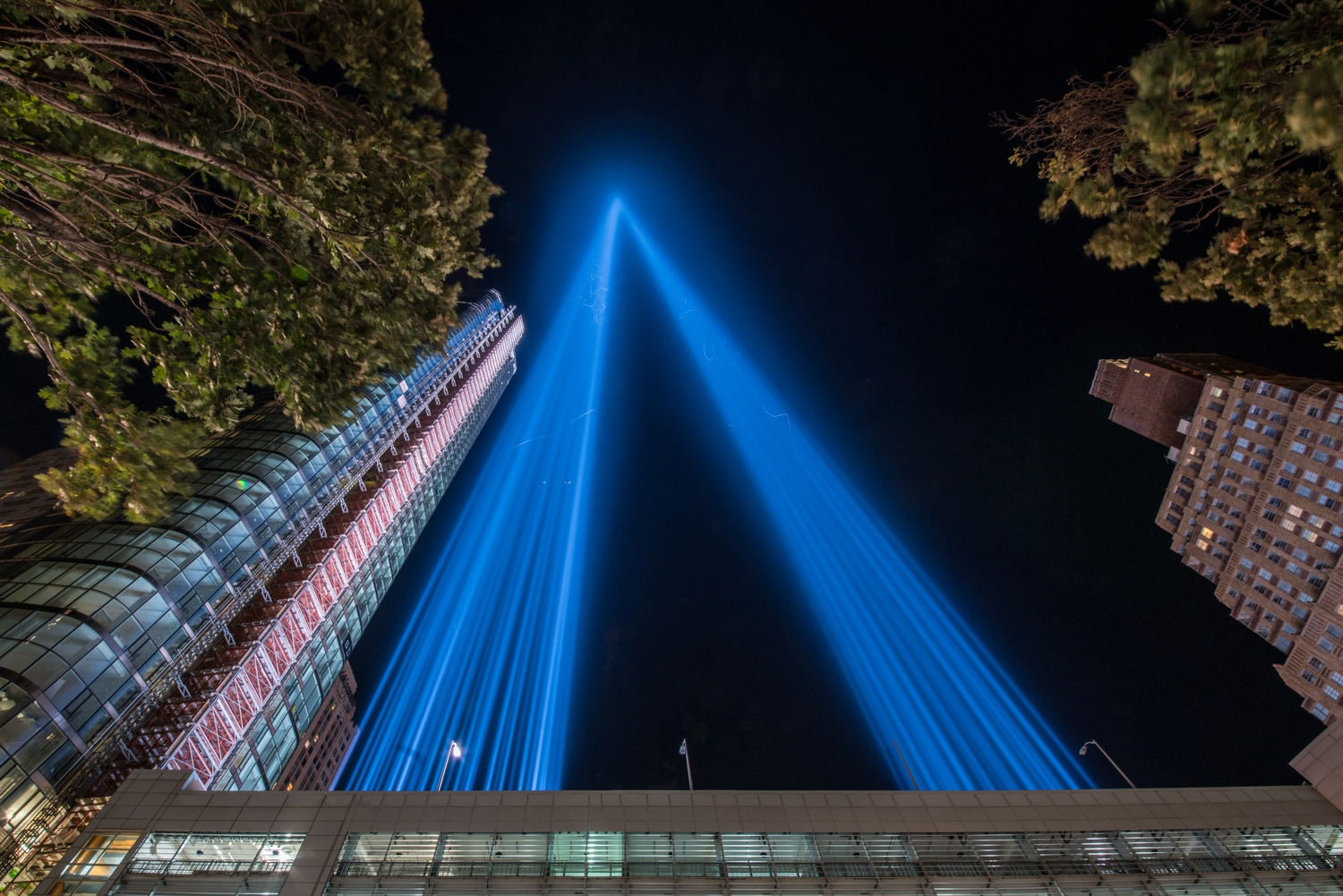 Up Close | The Tribute in Light, as viewed from the base of the memorial.