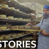 Finishing Cheese in Crown Heights at Crown Finish Caves | BK Stories
