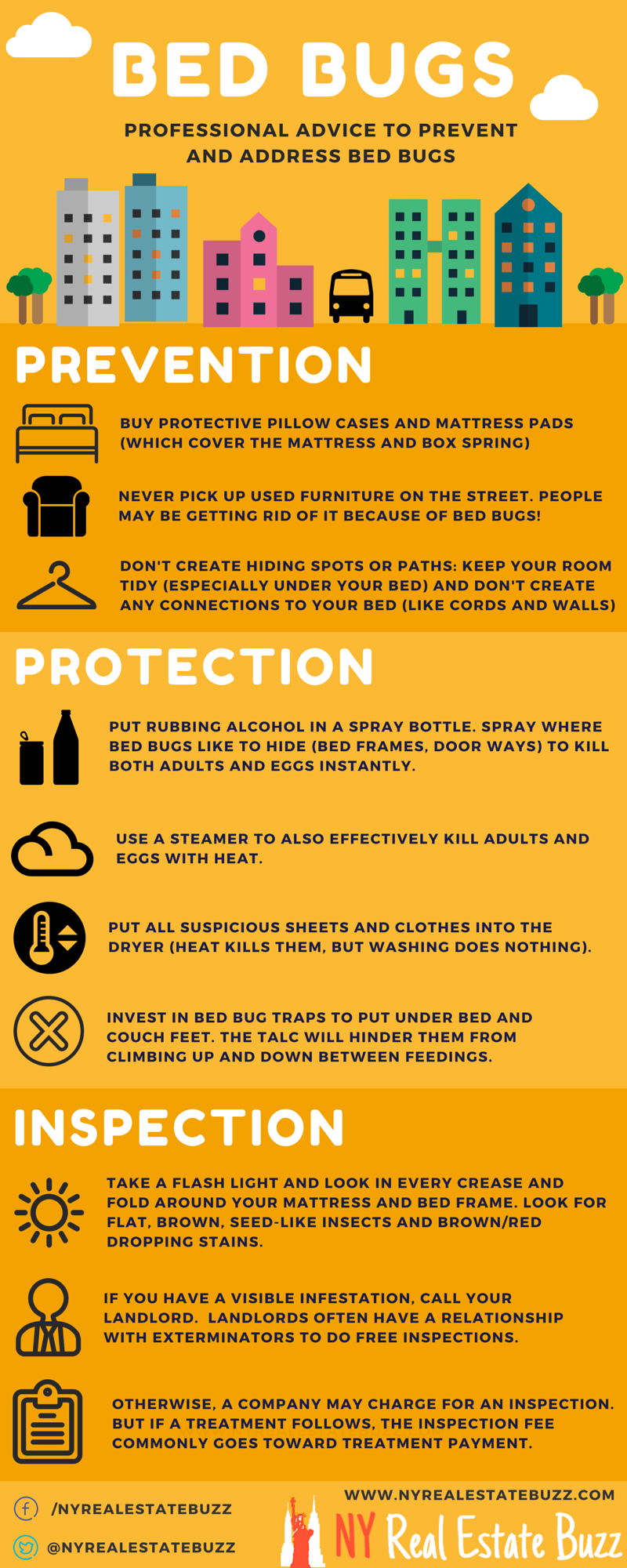 Inforgraphic Showing How To Prevent Remove And Inspect For Bed Bugs