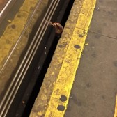 Been living in NYC way too long. Saw a guy on the tracks this AM, with the B train speeding ahead. I tried to pull him out and he ducked under the tracks just before it hit him. He's all good though, he just enjoyed a morning cig under the train after.