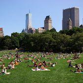 Central Park gökdelenlerin ortasında bir vaha... New York'a her gelişimde sabahları erkenden gidiyorum parka; takıyorum kulaklığımı, açıyorum müziğimi, en az bir saat yürüyorum. Sonra da çimenlerde uzanıp ,masmavi gökyüzüne bakıp hayallere dalıyorum.😇 Yüzölçümünün Monako Prensliğinden büyük olduğu söyleniyor::)))) Yazın hafta sonları manzara bu; mayolarıyla, şortlarıyla güneşlenen yüzlerce insan:) öte yandan kimi koşuyor, kimi bisiklete biniyor.. Geçenlerde okumuştum, arazi değeri 500 Milyar USD mış.. Bizde olsa çoktan 2-3 AVM , residanslar, ofis kuleleri dikmiştik!!! Böylesine değerli bir alanı kent parkı olarak bırakan zihniyete bravoo 👏Herkese iyi pazarlar🙏