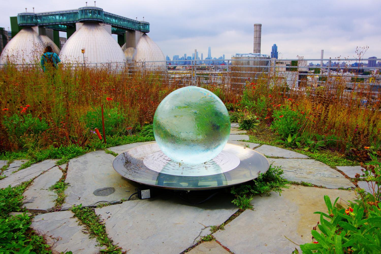 Crystal Ball, Kingsland Wildflower, Brooklyn