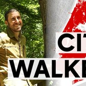 After 9,000 miles, man nears goal of walking every block in NYC