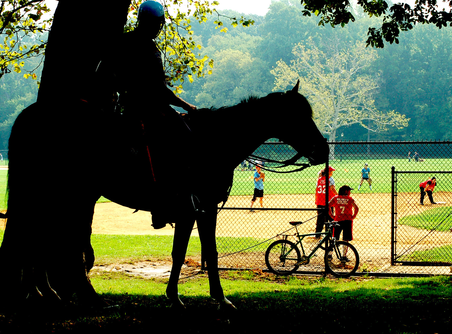 Horseback Riding in Prospect Park
