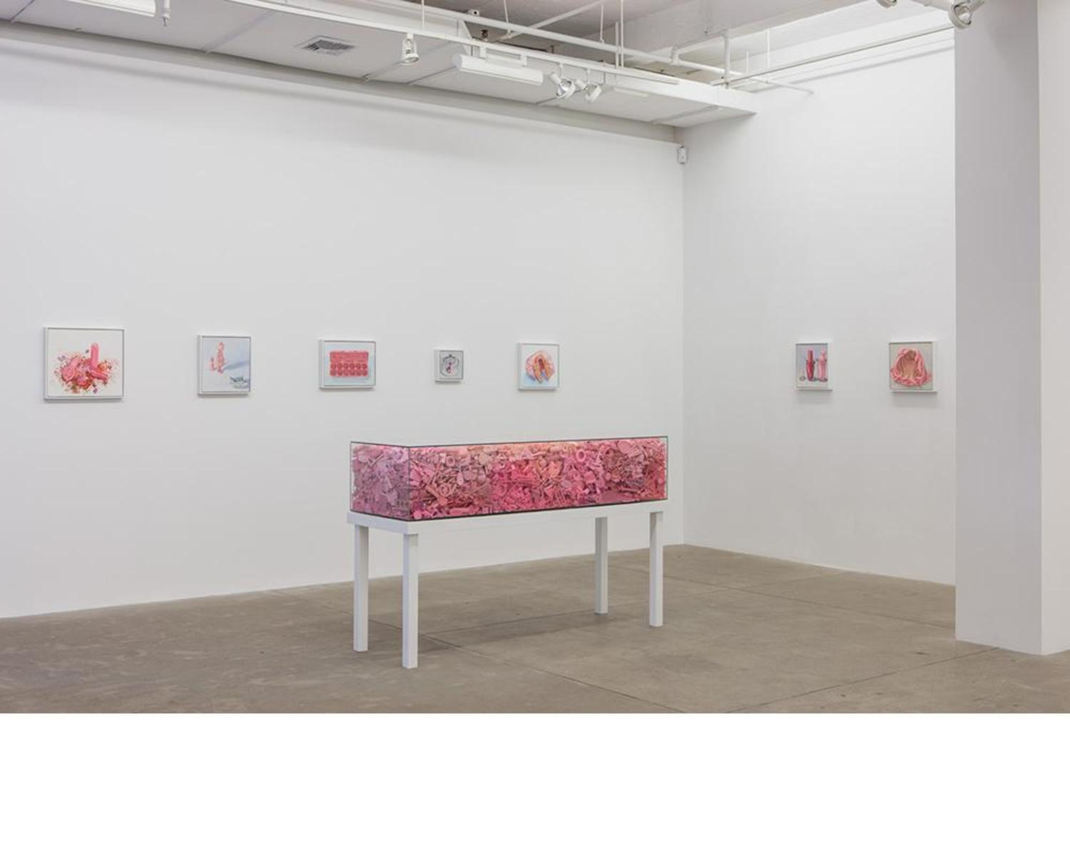 A Visual Art Exhibit That Offers A Unique Display Of Femininity