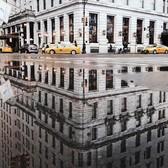 Любимые места в NY, которые можно снимать бесконечно и обязательны к посещению: 📍Plaza 🏰 📍Собор св. Патрика⛪️ 📍Утюжок)))🏫 📍Центральный парк🌲🌳 📍Бруклинский мост🌉 📍Times Square 🌆