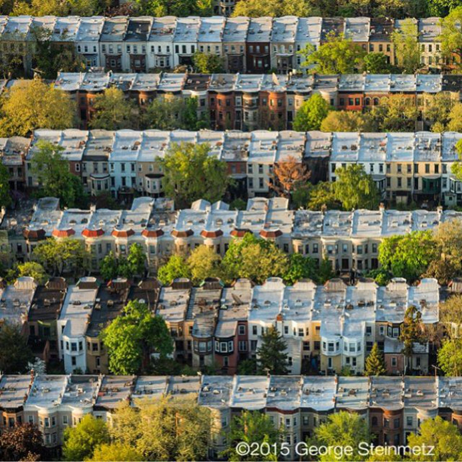 Photograph by George Steinmetz @geosteinmetz / @thephotosociety Brooklyn's Prospect-Lefferts Gardens was originally a Dutch farmstead in northern Flatbush Village. James Lefferts divided a portion of his property into 600 building lots in 1893, at a time of rapid urbanization, when Brooklyn was the third largest city in the U.S. By the time most of the houses were built, it had become part of the City of Greater New York (1896) and the subway had reached this section of Brooklyn (1905). #Lefferts insisted on deed restrictions that required the new houses to be brick or stone single-family residences, at least two stories with a cellar, selling for more than five thousand dollars.
