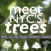 Meet NYC's Trees: Silver Linden