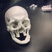 3D printed skull. #zprint