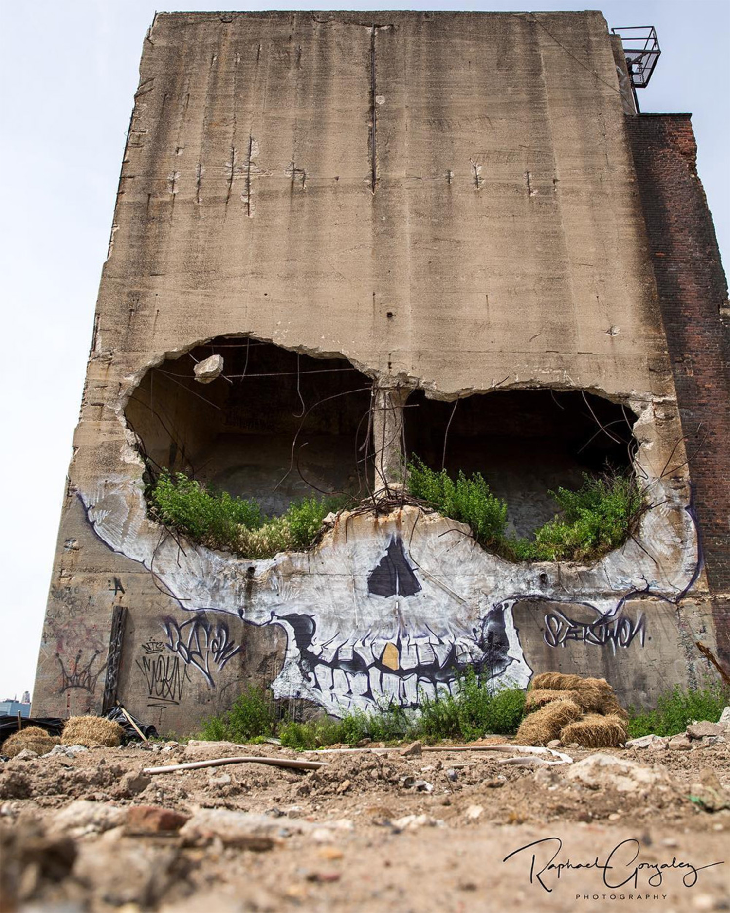 Greg Suits' Skull Mural in Greenpoint