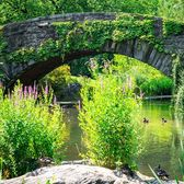 Gapstow Bridge, Central Park, Manhattan