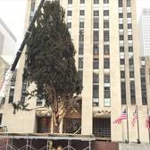 2014 Rockefeller Center Christmas Tree Hyperlapse