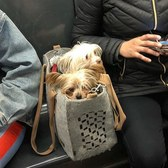 📷: @tdogdiary  #bagdogs #bagdog #dogsinbags