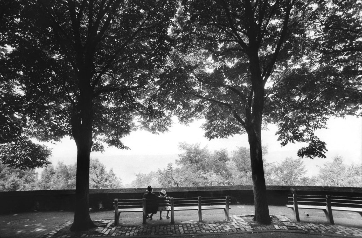 "July 20, 1991: A tranquil summer scene in Fort Tryon Park in an apparently unpublished photo, showing ""older folks"" enjoying some shade."