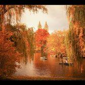 NEW YORK PHOTOGRAPHY | VIVIENNE GUCWA