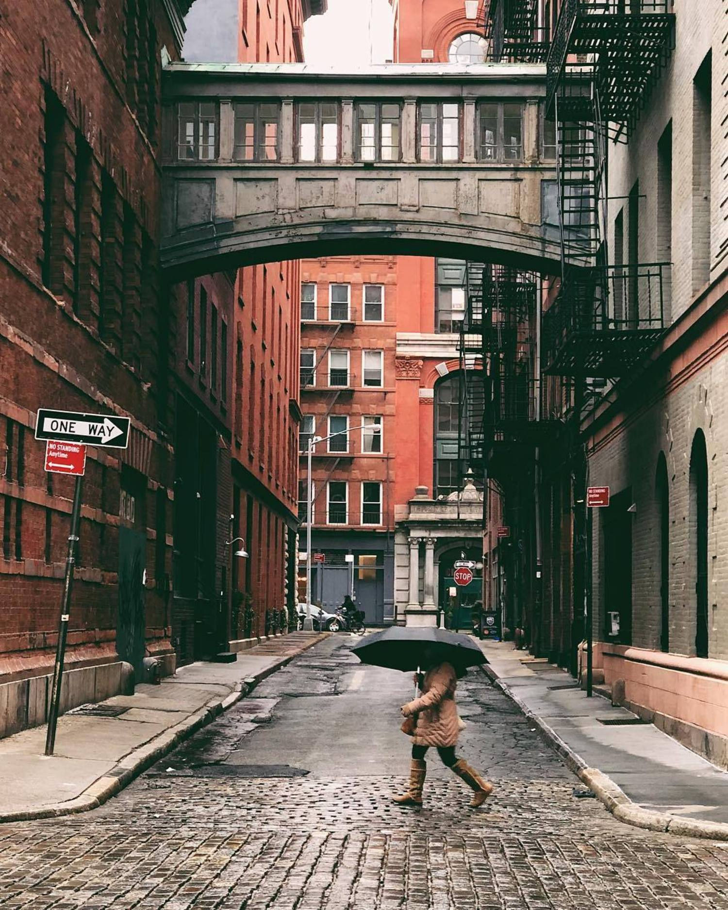 Staple Street Skybridge, Tribeca, New York, New York