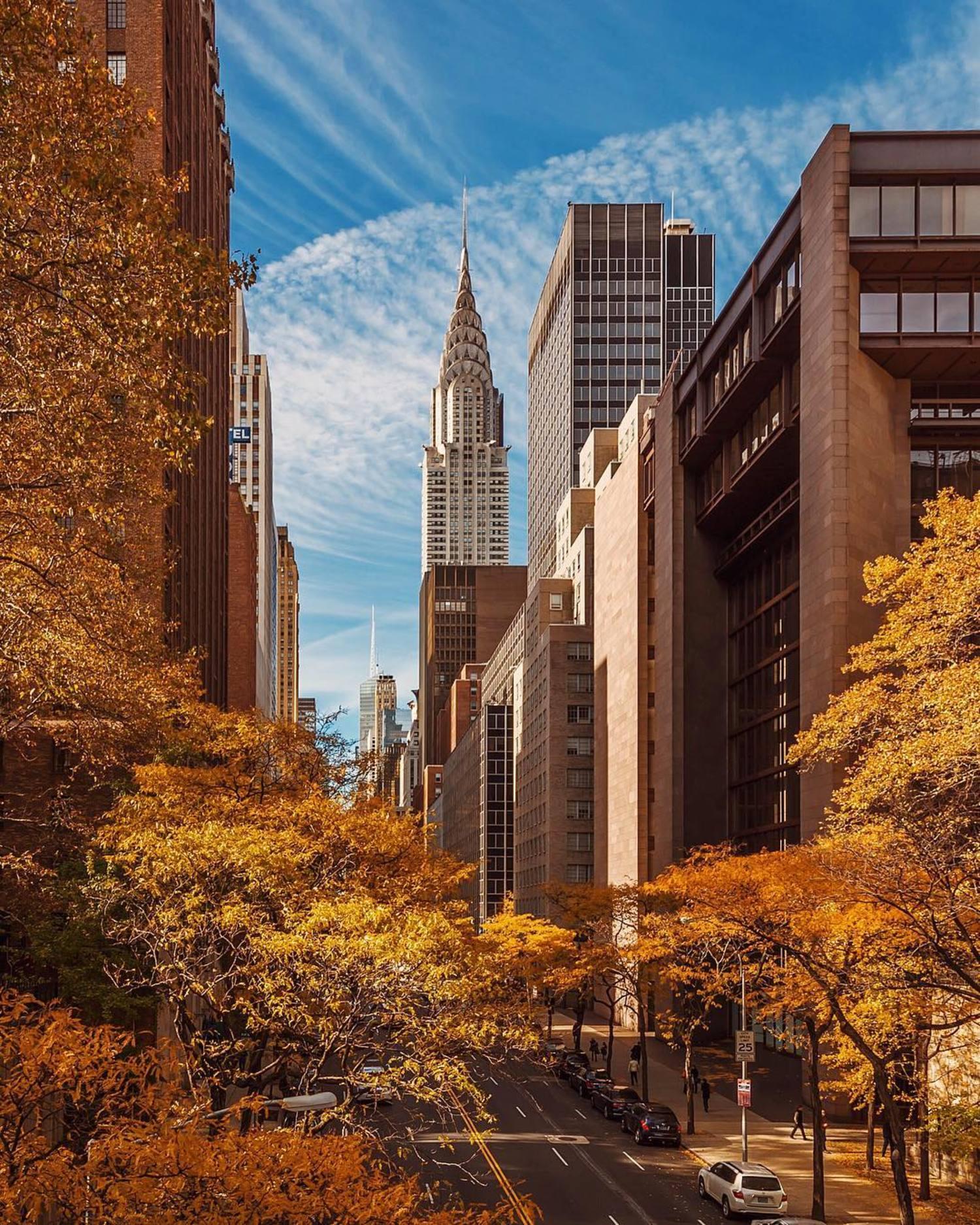 Happy weekend ✰ #NYC #NY #newyorkcity #newyork #new_york #manhattan #wildnewyork #EmpireStateOfMind #topnewyorkphoto #thisisnewyorkcity #nycprimeshot #made_in_ny #ig_nycity #igersofnyc #gf_nyc #icapture_nyc #instagramnyc #ILoveNY #newyorker #newyorknewyork #igersusa #newyork_instagram#supremenewyork #ig_northamerica #ig_unitedstates #instaglobal #igersmood #seeyourcity #rsa_streetview #chryslerbuilding