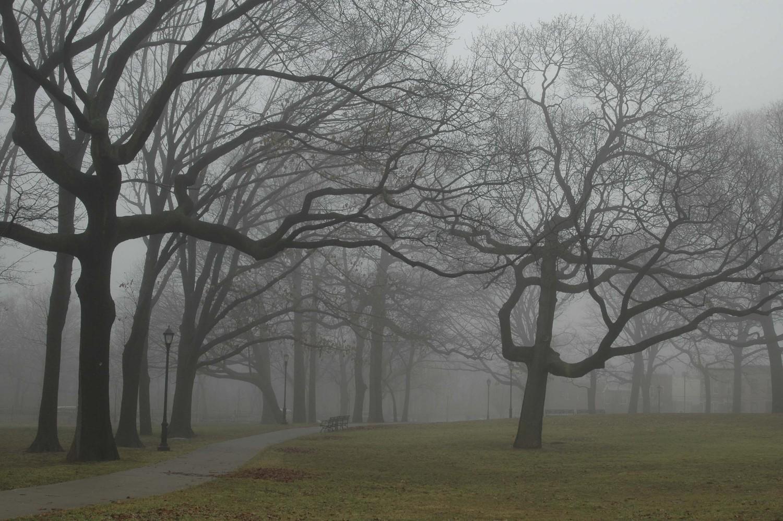 McKinley Park, Brooklyn