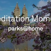#ParksAtHome Meditation Moment: Central Park