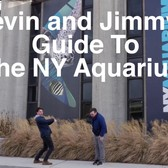 Kevin and Jimmy's Guide to New York City: The New York Aquarium