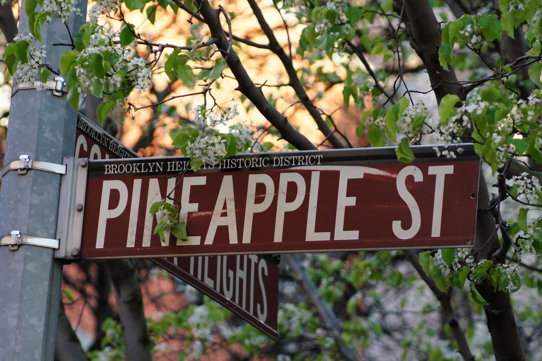 Pineapple Street, Brooklyn Heights, Brooklyn