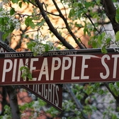 Pineapple Street, Brooklyn Heights, Brooklyn