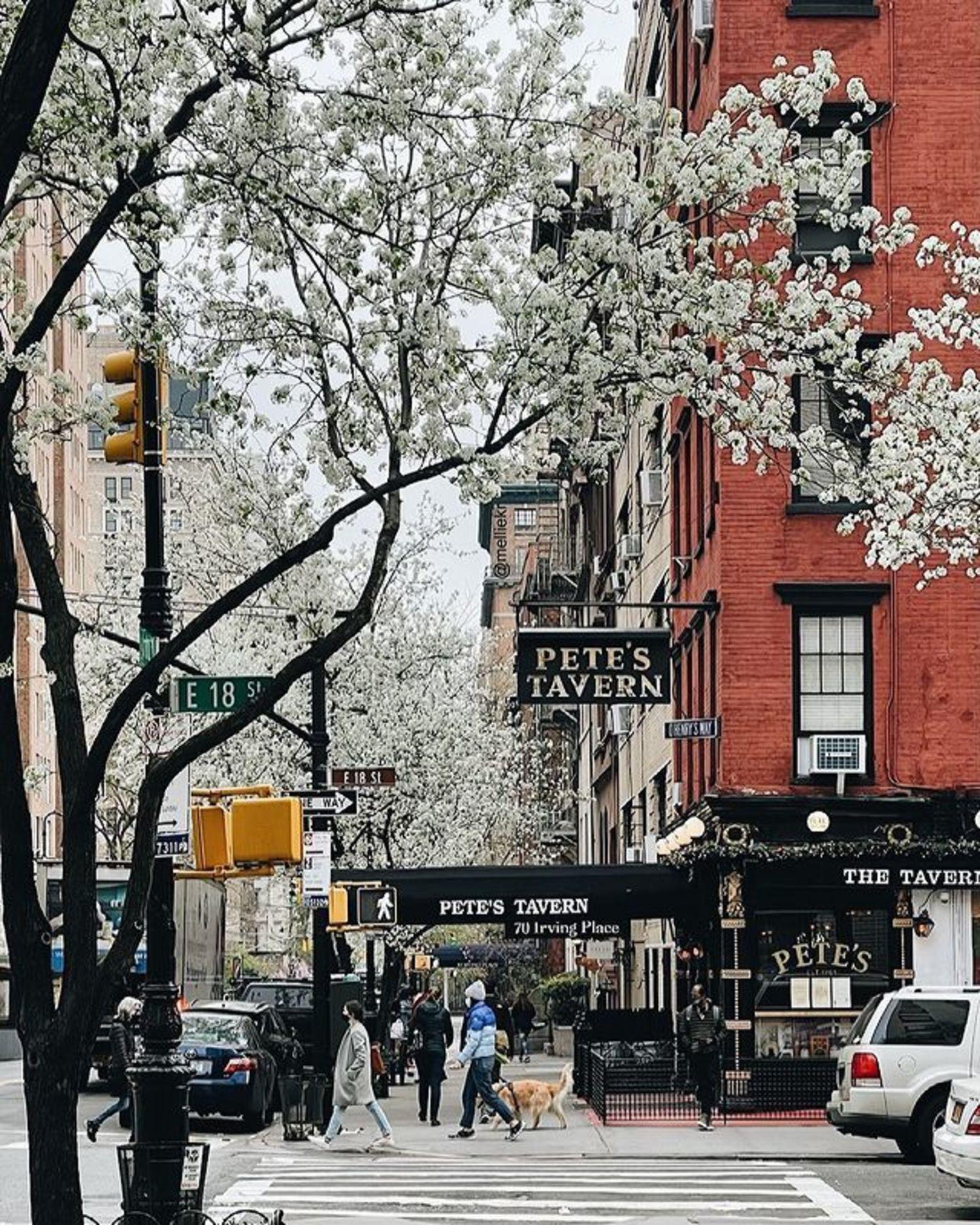 Pete's Tavern, Gramercy, Manhattan