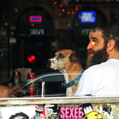 A dude and his dog sitting in a bar | East Village, NYC